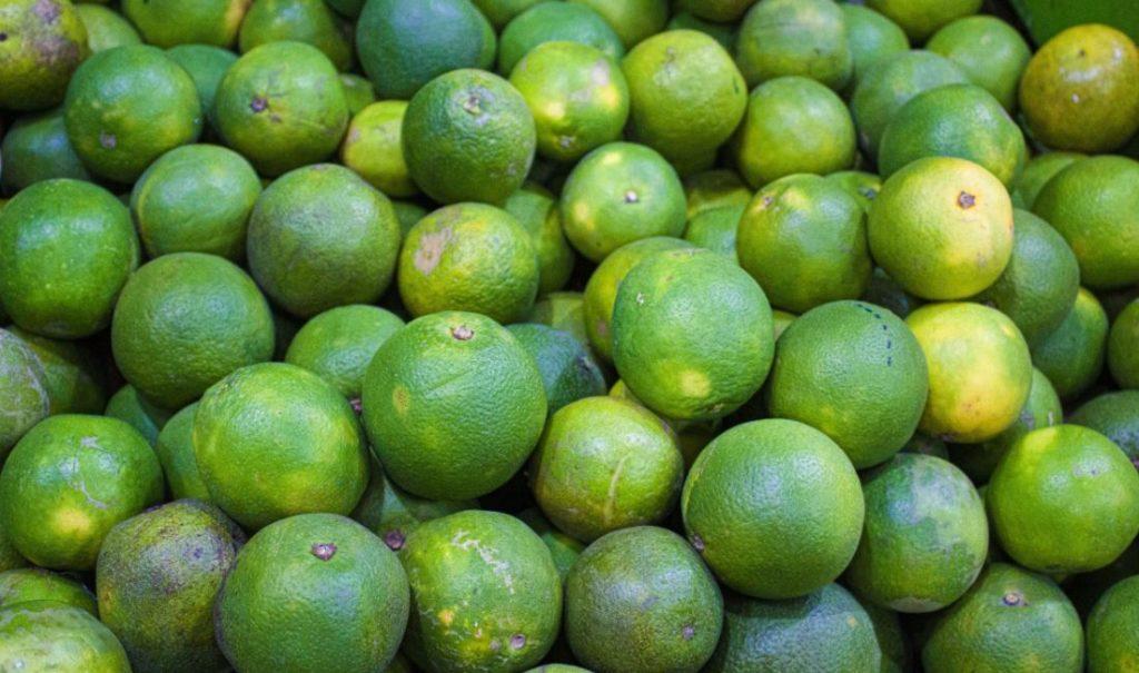 Usaha Menjual Sayuran, Buah-buahan