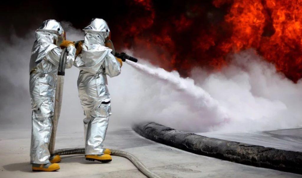 Bisnis Online Jasa Pest Control