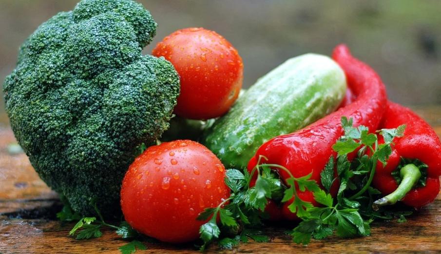 Bisnis Sayur Organik